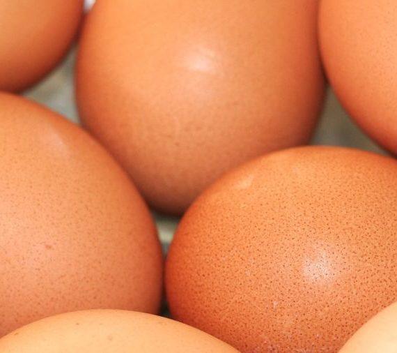 Višta ar kiaušinis?