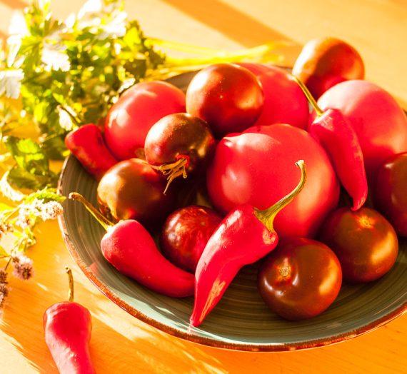Šviežių pomidorų ir cukinijų sriuba su makaronais
